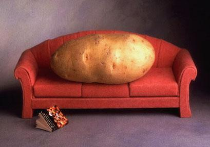 couch_potato_2047052